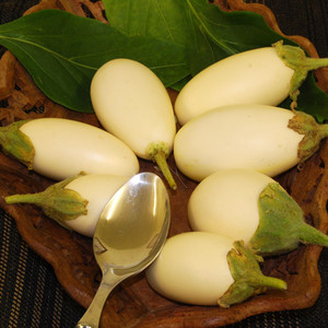 Japnese white egg 1